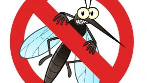 648_no-mosquito