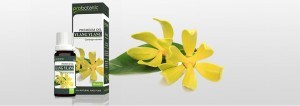 probotanic-ylang-ylang-oil-v