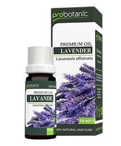 probotanic-lavanda