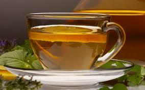 Čaj od nane u trudnoći