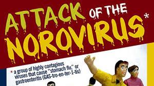 Karvakrol iz ulja divljeg origana deluje i na ozloglašeni Norovirus