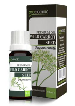 probotanic-wild-carrot-seed-oil